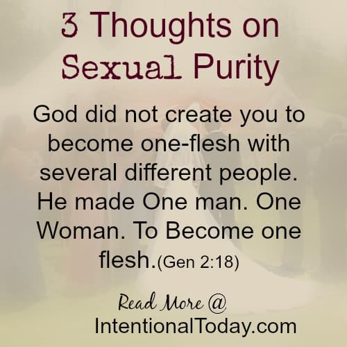 http://intentionaltoday.com/wp-content/uploads/2014/09/3-thoughts-on-sexual-purity3.jpg