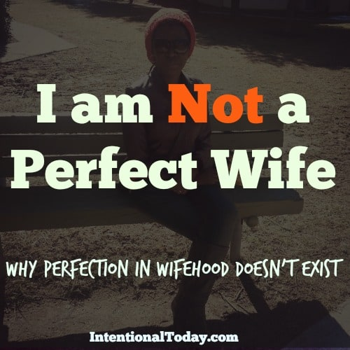 I am Not A Perfect Wife (and It's Plain Silly Sometimes)